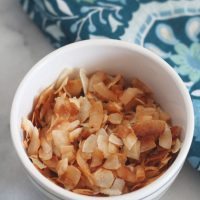 Keto Lightly Sweetened Toasted Coconut Chips